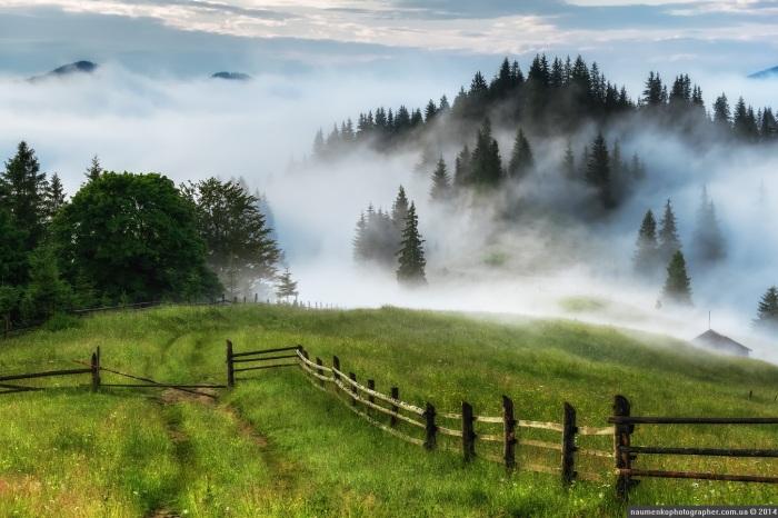 mystical-fog-ukrainian-carpathians-1.jpg