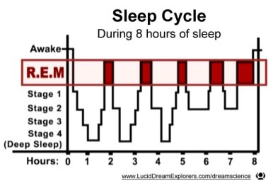 sleep_cycle_rem_8_hour_graph.jpg