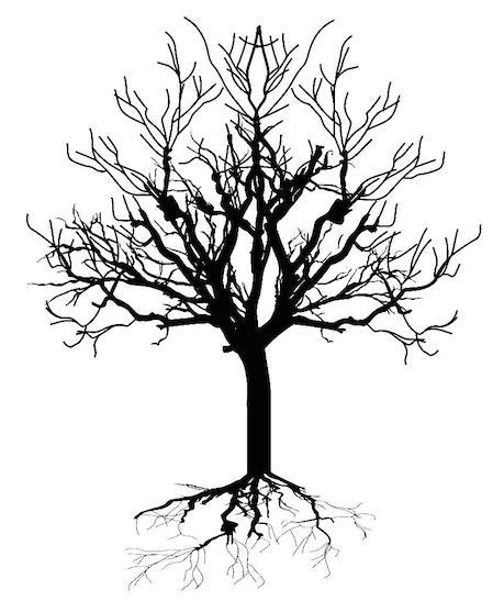 depositphotos_64423043-stock-illustration-dead-tree-silhouette.jpg