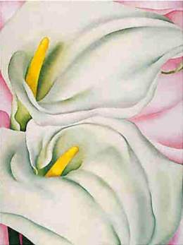 Two-Calla-Lilies-on-Pink-1928-Georgia-OKeeffe.jpg