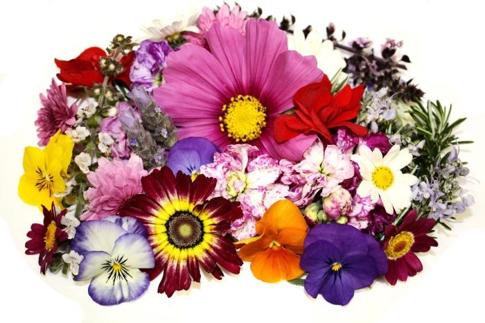 premium-flowers-assortment.jpg